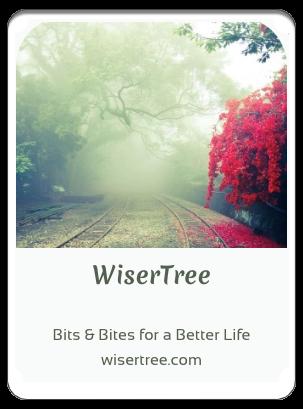 411LTD index WiserTree
